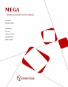 MEGA - Moldova Economic Growth Analysis, no.3, 2010