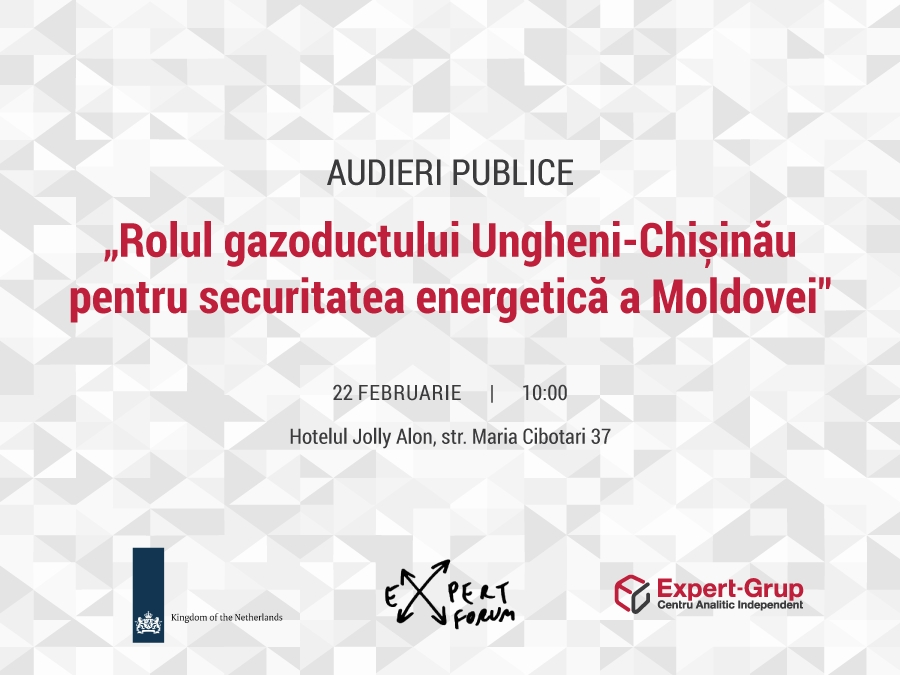 "Public hearings ""The role of the Ungheni - Chisinau gas pipeline for the energy security of Moldova"""