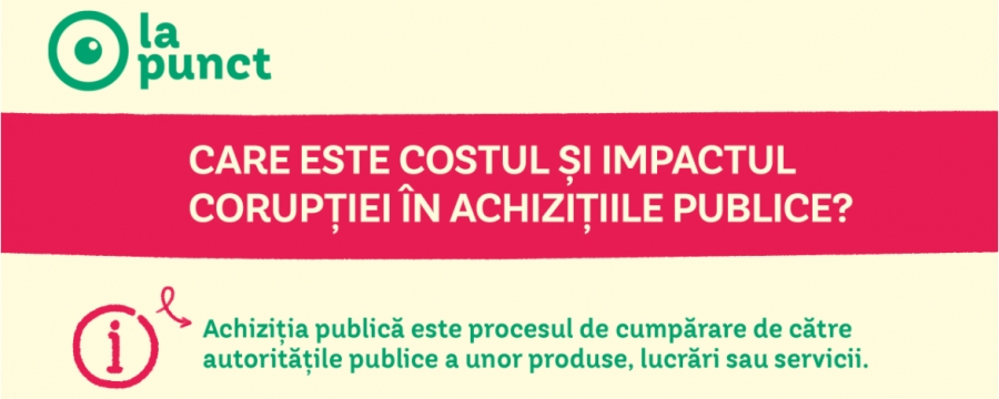 What is the Cost and Impact of Corruption in Public Procurement?