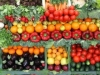 The Wholesale Agricultural Marketplace – the Savior of the Moldovan Agriculture?
