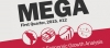 MEGA XII: The year of a looming crisis, Q1-2015